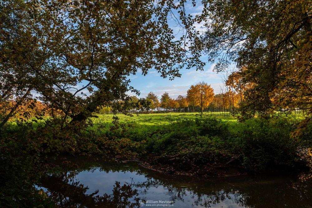 Photo in Nature #geijsteren #venray #oostrum #landgoed #landgoed geijsteren #estate #weichs de wenne #limburg #noord-limburg #nature #nature reserve #forest #woods #autumn #leaves #foliage #red #green #orange #yellow #geysteren #trunk #autumn tree #brook #reflections #beek #oostrumse beek