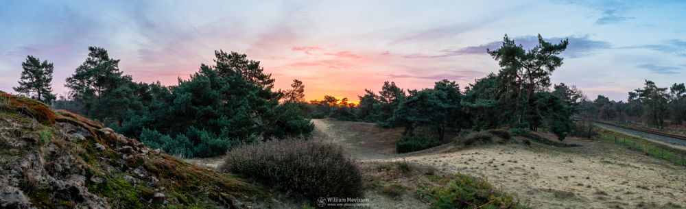 Photo in Landscape #boshuizerbergen #boschhuizerbergen #noord-limburg #limburg #venray #nature #nature reserve #forest #woods #juniper #juniper thickets #sand #shifting sand #heathland #heather #limburgs landschap #netherlands #pine #pine forest #sunrise #sun #colorful #sky #twilight #panorama #pano