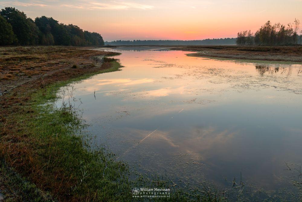 Photo in Landscape #bergerheide #maasduinen #bergen #nieuw-bergen #limburg #noord-limburg #lelieven #sunrise #twilight #water #mirror #reflections #trees #mood #light #autumn