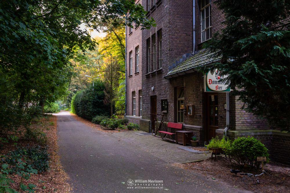 Photo in Architecture #trees #forest #limburg #noord-limburg #venray #st. annaterrein #sint annaterrein #nature #green #sunrise #historical #psychiatric #hospital #heritage #decay #light #mood #path