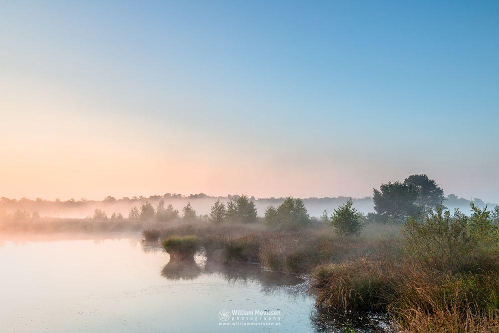 Photo in Landscape #fen #pikmeeuwenwater #maasduinen #limburg #noord-limburg #wellerlooi #bergen #nature #light #water #grasses #fog #sunrise #mist #dehamert #mood #hamert