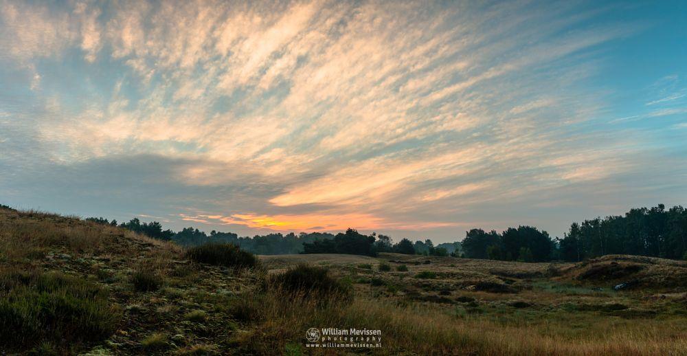 Photo in Landscape #bergerheide #forest #woods #heathland #maasduinen #limburg #noord-limburg #nieuw-bergen #bergen #national park #nature #sand #dunes #sanddunes #riverdunes #light #land #trees #moss #sunrise #sunlight #clouds #cloudy