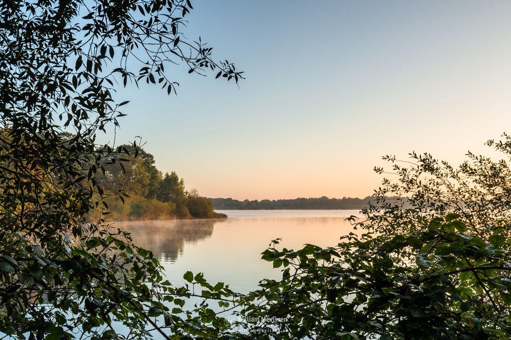 Photo in Landscape #trees #lake #reindersmeer #limburg #maasduinen #well #noord-limburg #sunrise #light #serene #view #mood #goldenhour #colors #nature #green #window