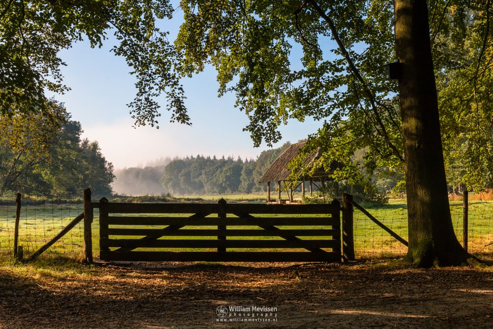 Photo in Nature #geijsteren #venray #oostrum #landgoed geijsteren #estate #landgoed #limburg #noord-limburg #nature #nature reserve #forest #woods #geysteren #path #mist #fog #gate #sheepfold