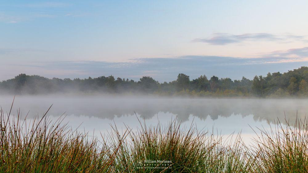 Photo in Landscape #bergerheide #forest #bergen #woods #maasduinen #limburg #noord-limburg #nieuw-bergen #national park #nature #sand #dunes #sanddunes #sunrise #light #trees #misty #mist #fog #foggy #fen #driessenven