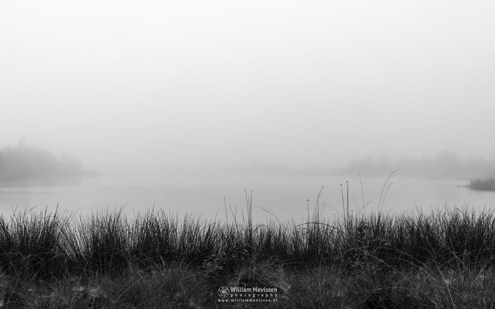 Photo in Black and White #maasduinen #limburg #noord-limburg #wellerlooi #bergen #nature #light #mood #mist #westmeerven #hamert #dehamert #blackandwhite #silhouettes #bw