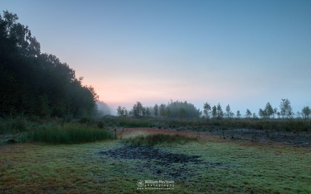 Photo in Landscape #limburg #bergerheide #woods #maasduinen #nieuw-bergen #bergen #noord-limburg #forest #trees #nature #light #water #twilight #sunrise #mood #mist #fog #colors #summer #fen