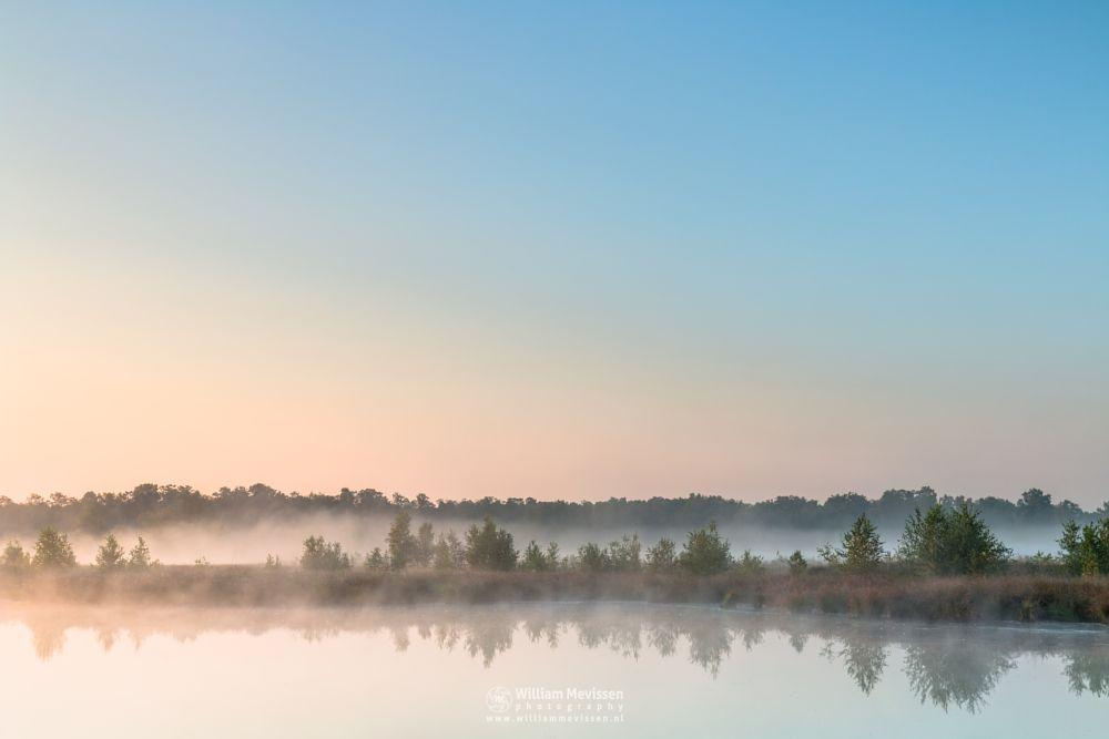 Photo in Landscape #pikmeeuwenwater #fen #heathland #maasduinen #limburg #noord-limburg #wellerlooi #bergen #nature #water #light #trees #fog #sunrise #mist #grasses #hamert #dehamert #mood