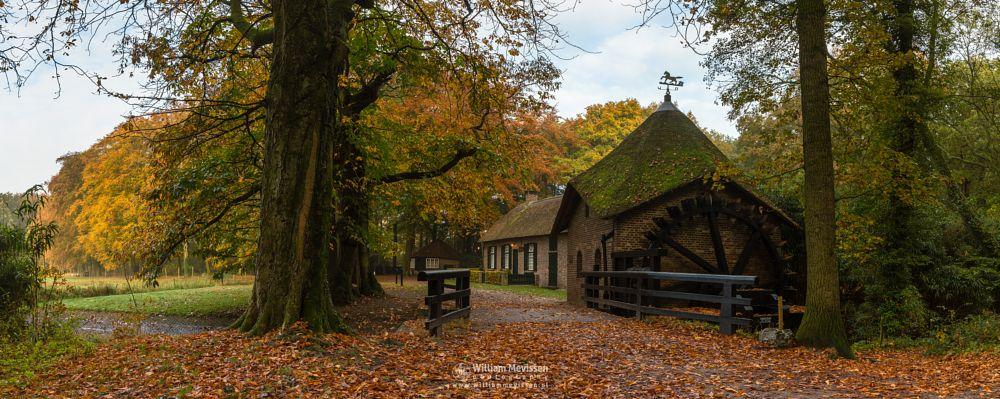 Photo in Nature #geijsteren #venray #oostrum #landgoed geijsteren #limburg #noord-limburg #nature #rosmolen #forest #autumn #tree #watermill #watermolen