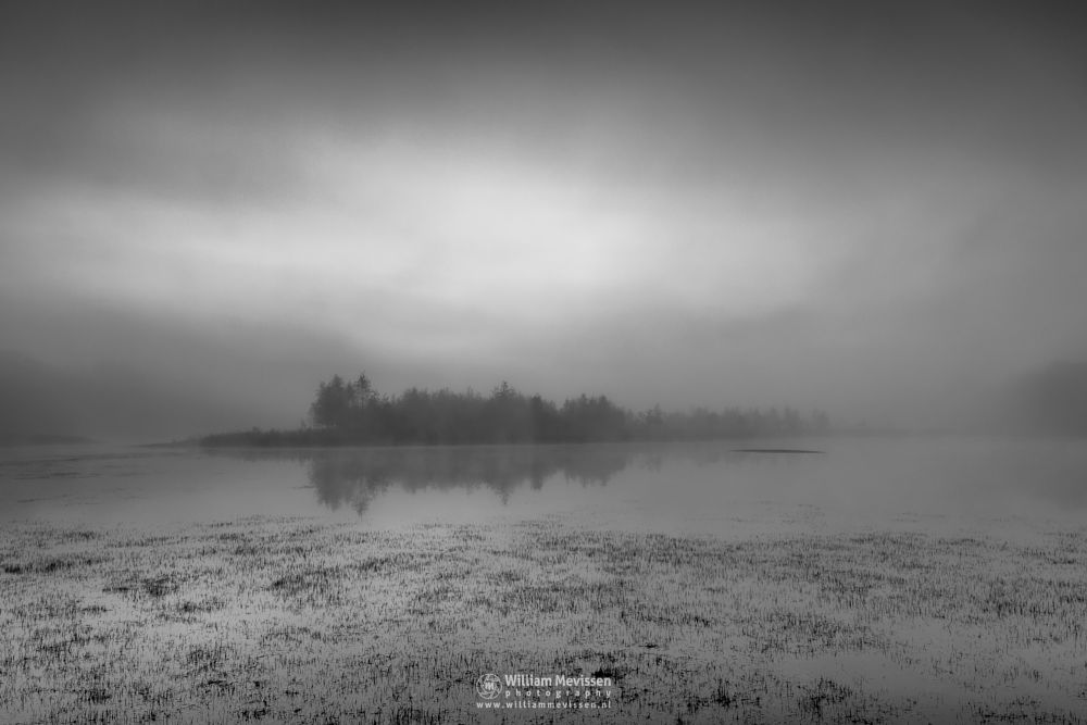 Photo in Black and White #bergerheide #limburg #noord-limburg #nieuw-bergen #bergen #nature #light #fen #trees #summer #mist #water #mood #sunrise #twilight #blackandwhite #grasses