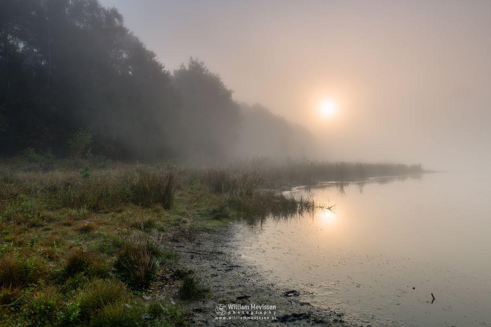 Photo in Landscape #bergerheide #forest #woods #maasduinen #limburg #noord-limburg #nieuw-bergen #nature #fen #summer #mist #fog #sunrise #water