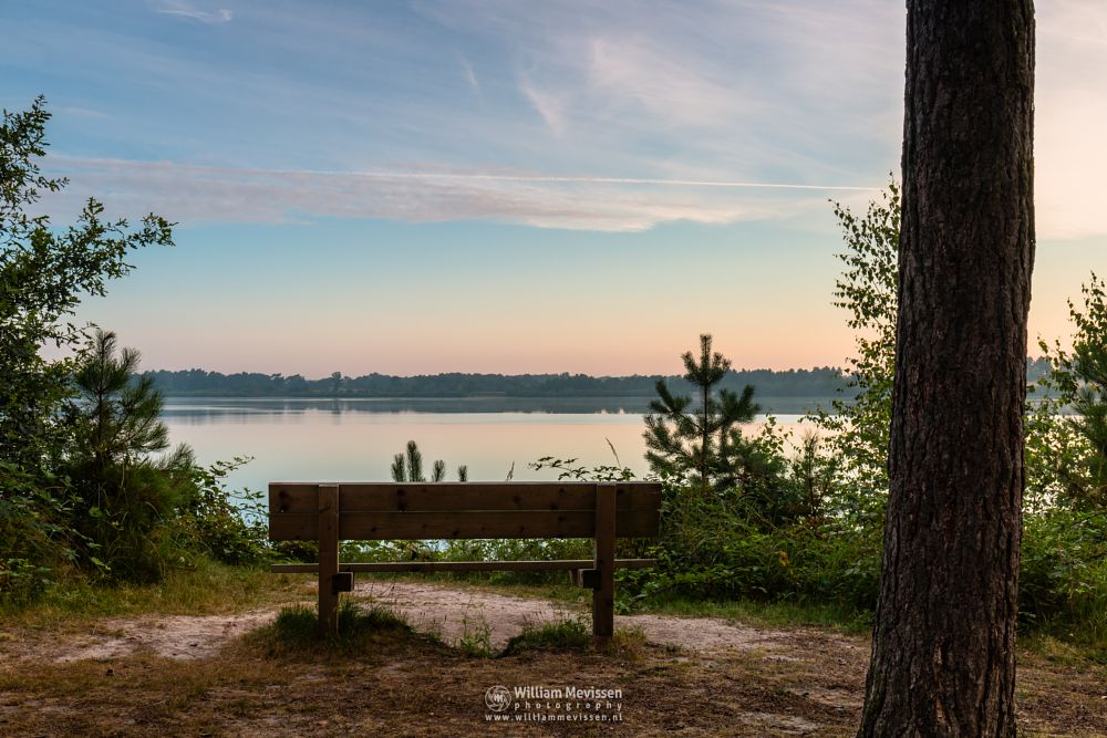 Photo in Landscape #trees #pine #pine forest #forest #lake #reindersmeer #maasduinen #limburg #noord-limburg #well #national park #nature #green #sunrise #colors #light #bench #serene #view #viewpoint