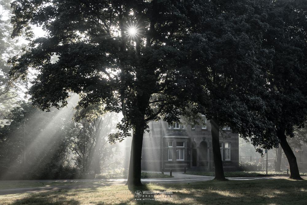 Photo in Architecture #mist #limburg #noord-limburg #venray #annaterrein #annapark #nature #historical #psychiatric #hospital #heritage #summer #silhouettes #rays #trees #house #light