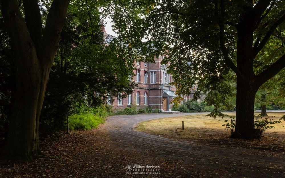 Photo in Architecture #trees #pine #forest #limburg #noord-limburg #venray #st. annaterrein #sint annaterrein #nature #green #sunrise #historical #psychiatric #hospital #heritage #decay #light #mood #path