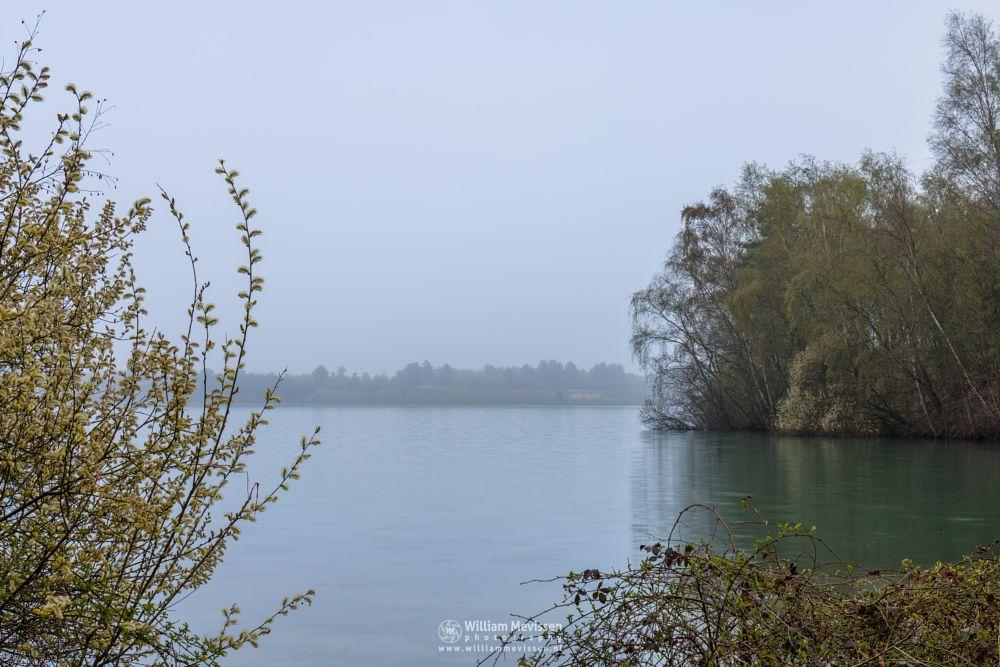 Photo in Landscape #trees #forest #lake #noord-limburg #reindersmeer #maasduinen #limburg #well #nature #mood #mist #fog #grey
