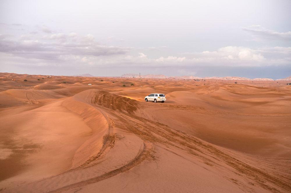 Photo in Landscape #leica #leica x-u #dxbimran #desert #landscape