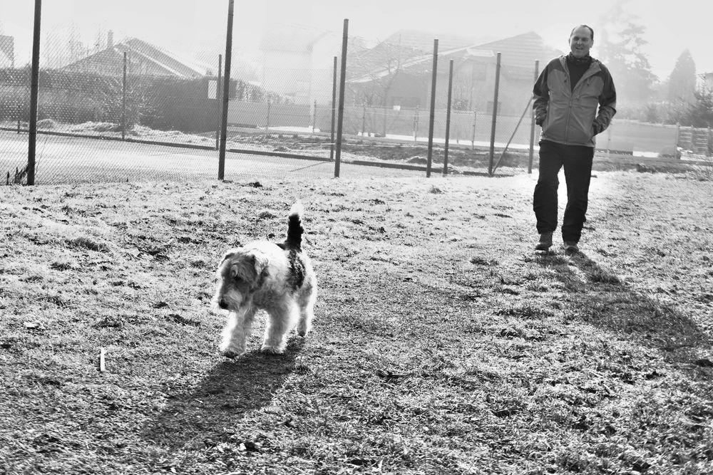 Photo in Street Photography #dog #punktum #bw #people #street