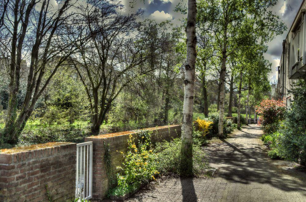 Photo in Cityscape #small street #amersfoort #netherlands #hdri #cityscape #spring