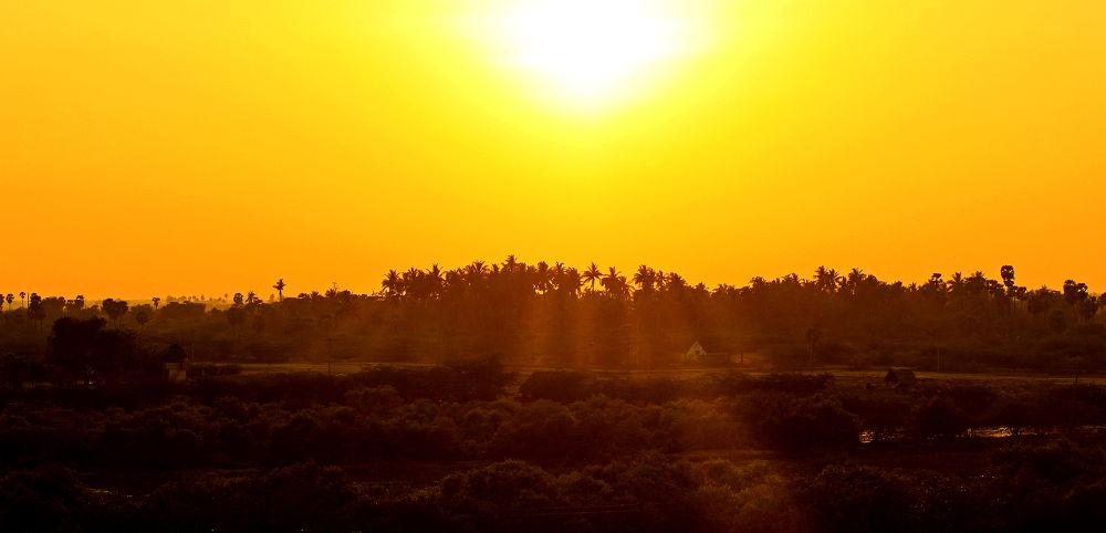 Photo in Landscape #sun #orange #nature #silhouette #dusk #shadow #light #landscape