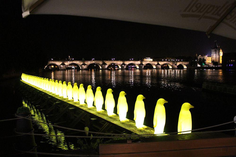 Photo in Urban #bridge #prague