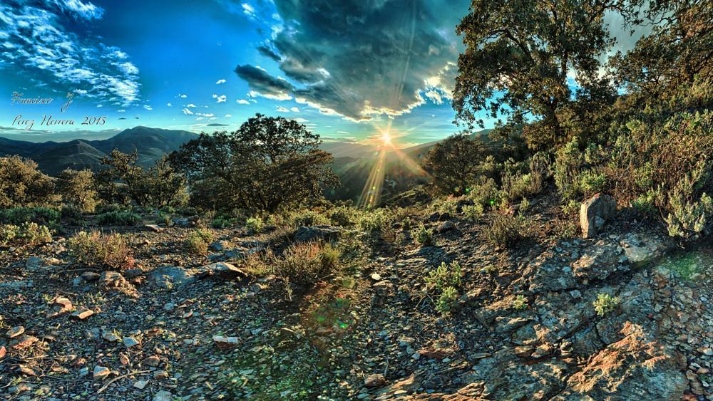 Photo in Landscape #landscape #sunset #sun #land #trees #light #pitres #alpujarra #granada #spain #paisaje