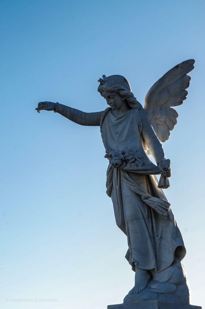 Photo in Fine Art #cementerio #religioso #escultura