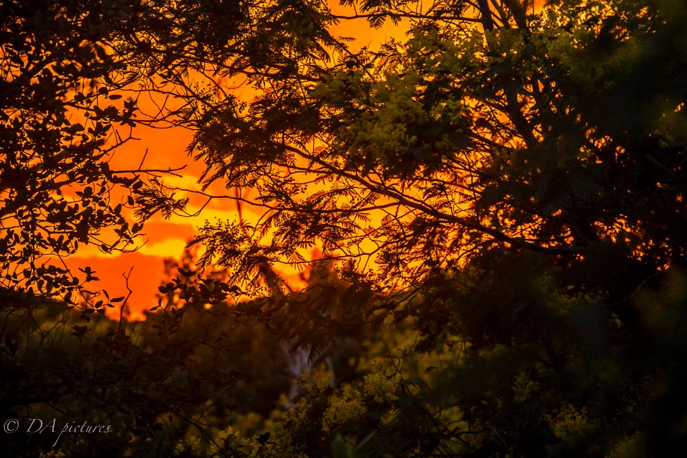 Photo in Landscape #sunset #colors