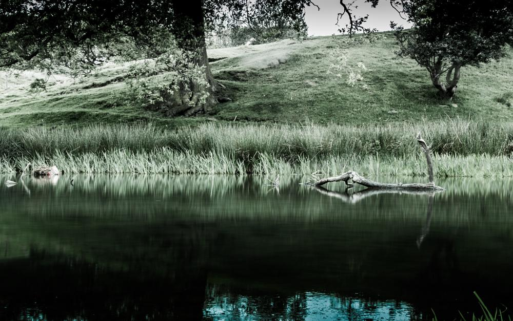 Photo in Landscape #landscape #reflection