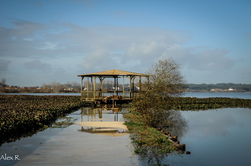 Photo in Landscape #water