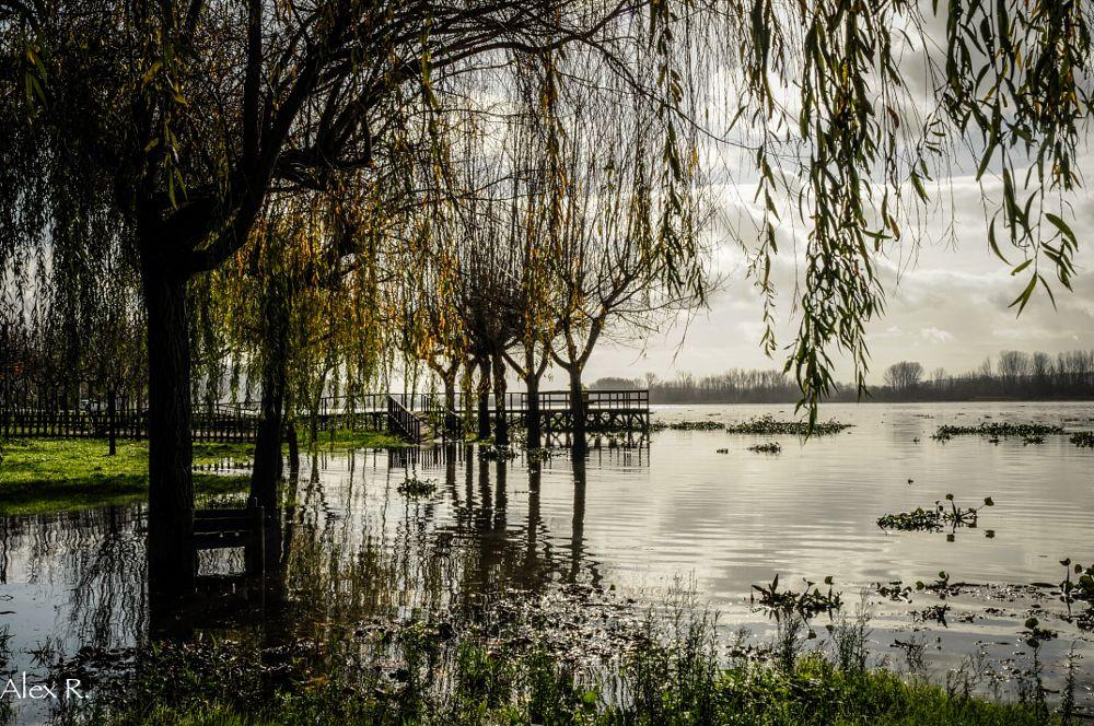 Photo in Landscape #lake