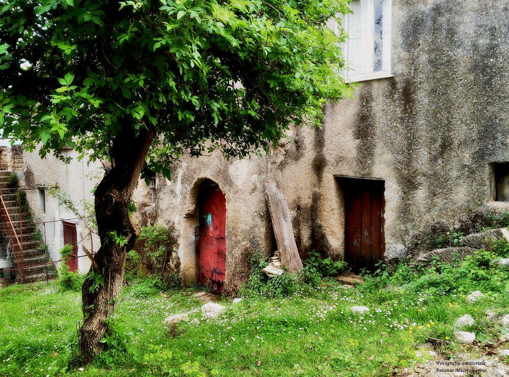 Photo in Rural #vecchio casolare #old cottage