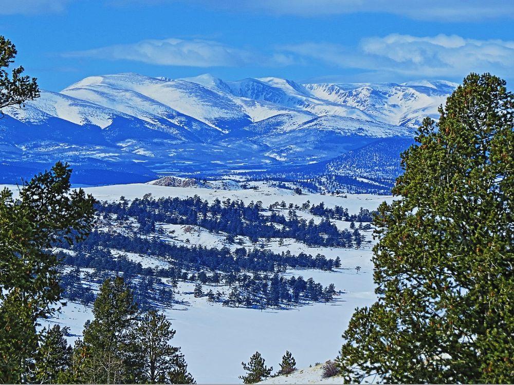 Photo in Landscape #snow