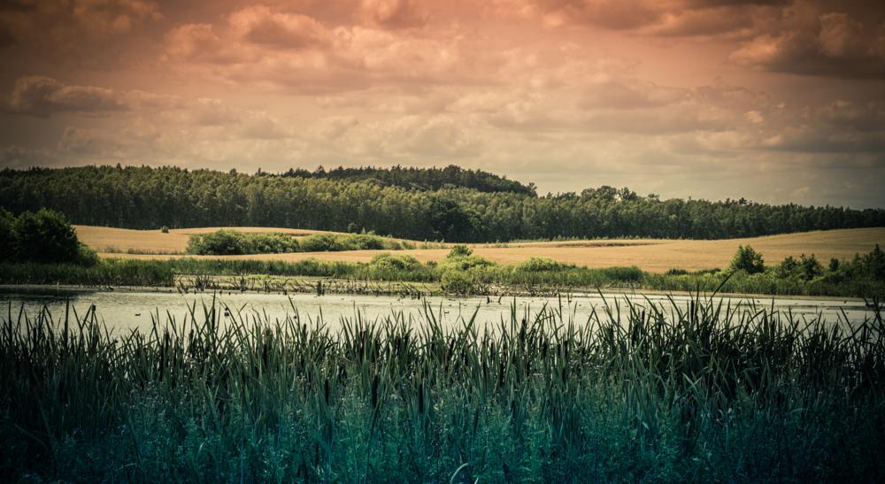 Photo in Landscape #nature #landscape #poland #nikon #d3200