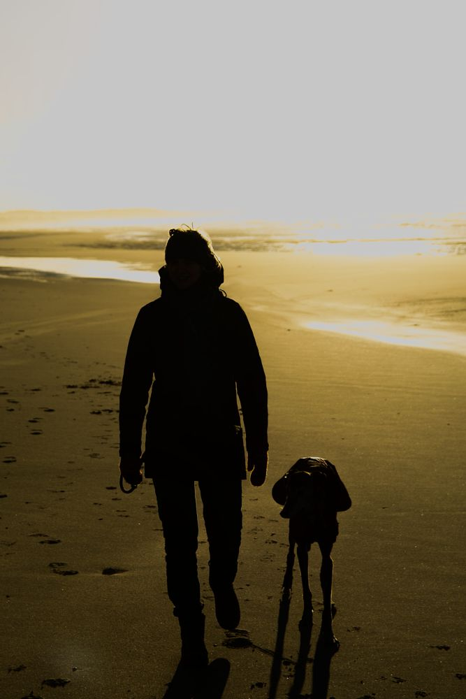 Photo in People #dog #beach #women #against light