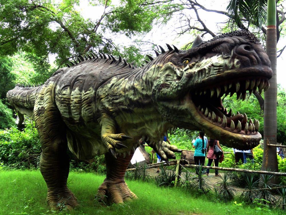 Photo in Animal #dinosourus