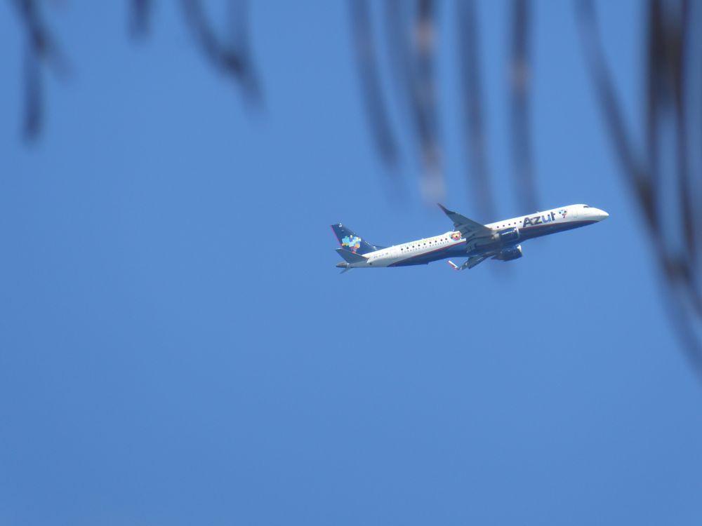 Photo in Travel #azul #airplane #beach #ilheus #bahia #brazil