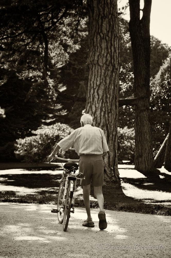Photo in Random #innsbruck #park #old man