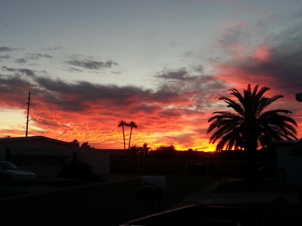 Photo in Landscape #desert sunset