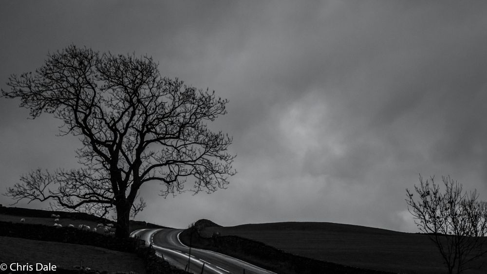 Photo in Landscape #yorkshire dales #tree #roads #landscape