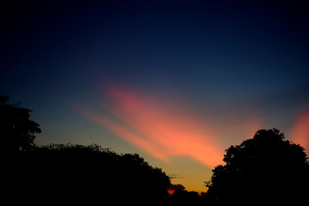 Photo in Travel #cambodia #siem reap #west baray #sunset #sky #colours