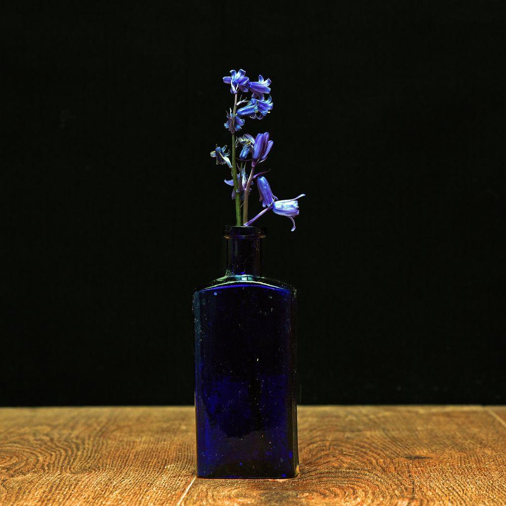 Photo in Random #bluebells #flowers #bottle #blue
