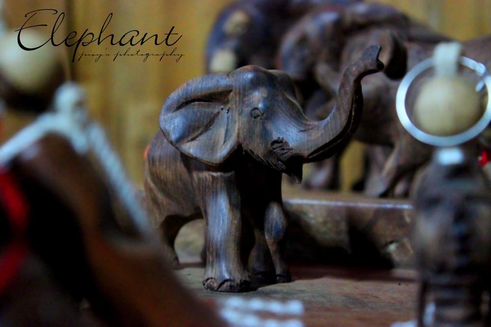 Photo in Random #elephant #animal #doll