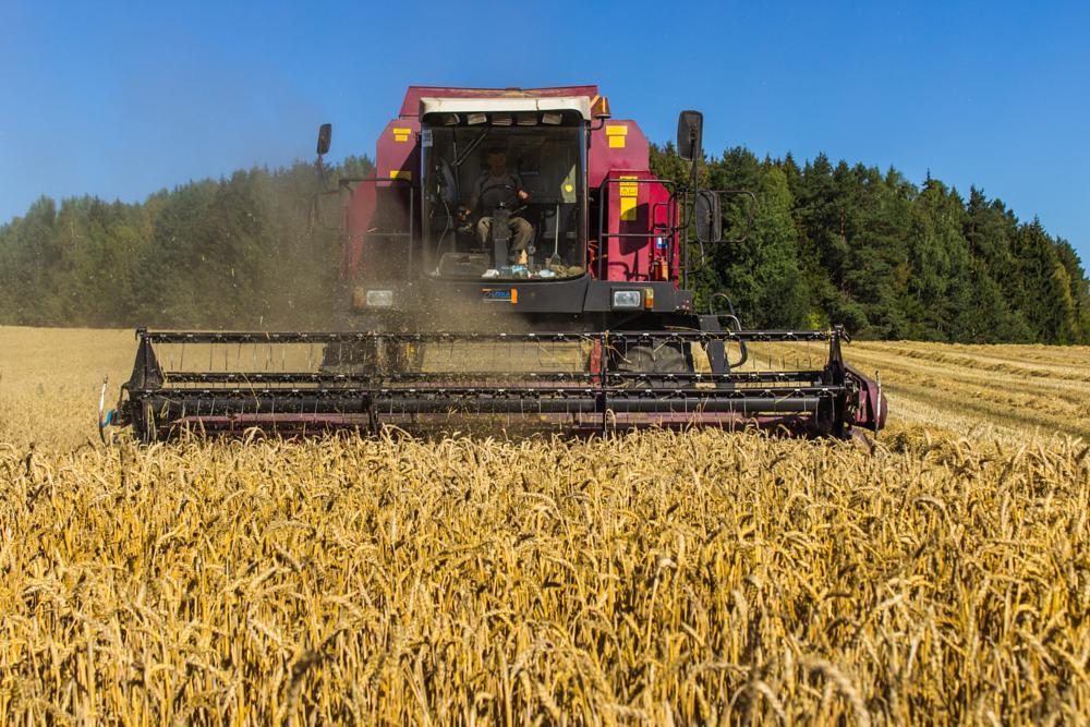 Photo in Landscape #harvest #combine #field #yellow #sky #blue