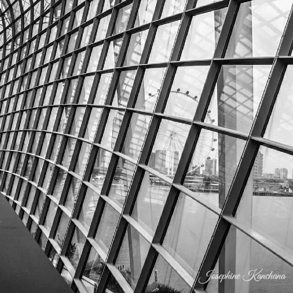Photo in Architecture #singapore #garden by the bay #black and white #flower dome