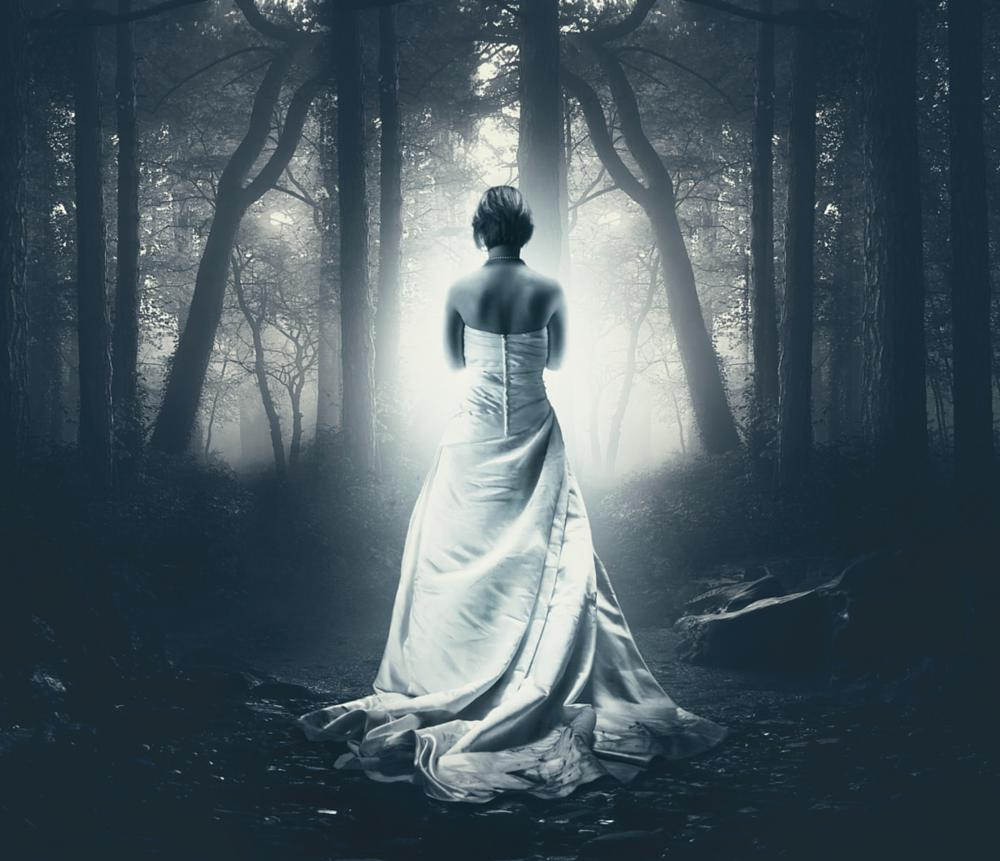 Photo in People #wedding #trash your dress #dress #woods #forest #composing #blue #fantasy