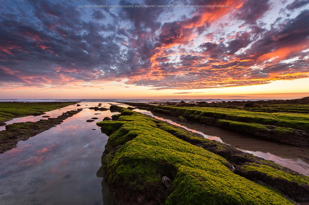 Photo in Landscape #coast #magoito #sintra #green #red #sunset #hugo augusto #portugal