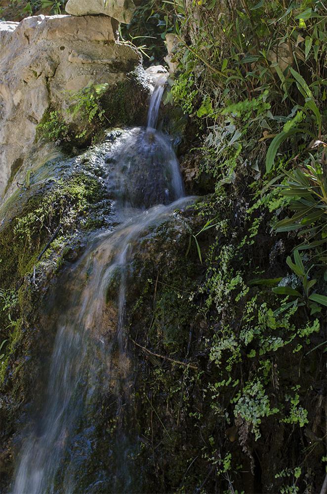 Photo in Nature #serra #valencia