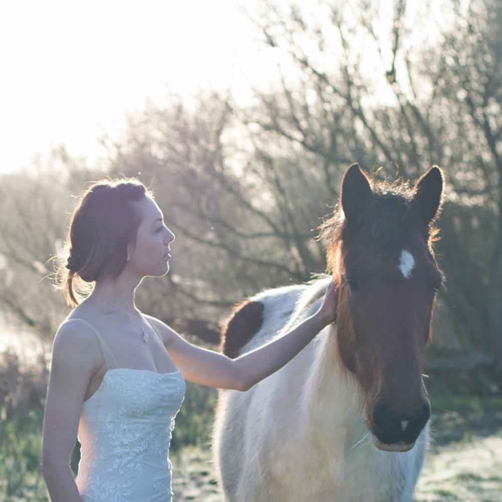 Photo in Fashion #pretty #girl #dress #sunrise #horse #england #love #sun rise #amazing #light