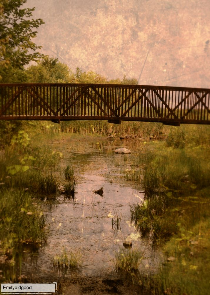 Photo in Landscape #landscapes #water #riverbed #nature #plants #flower #structures