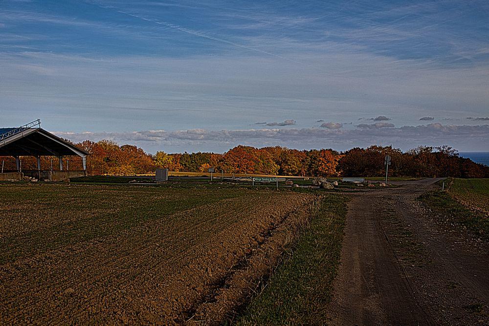 Photo in Random #autumn #bornholm #2015